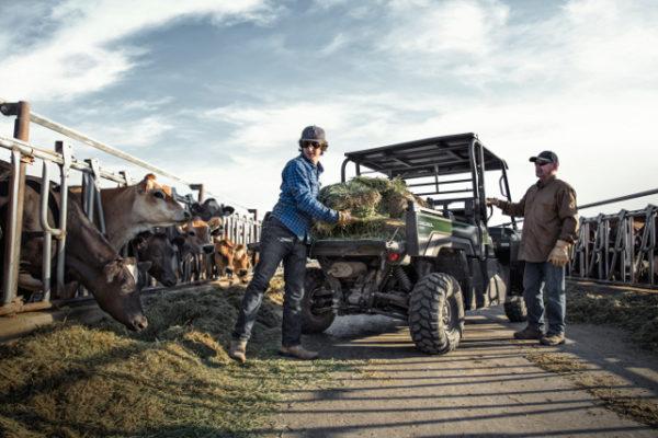 kawasaki mule pro dx lavado hr 05 600x400 - Kawasaki Mule PRO-DX Diesel EPS