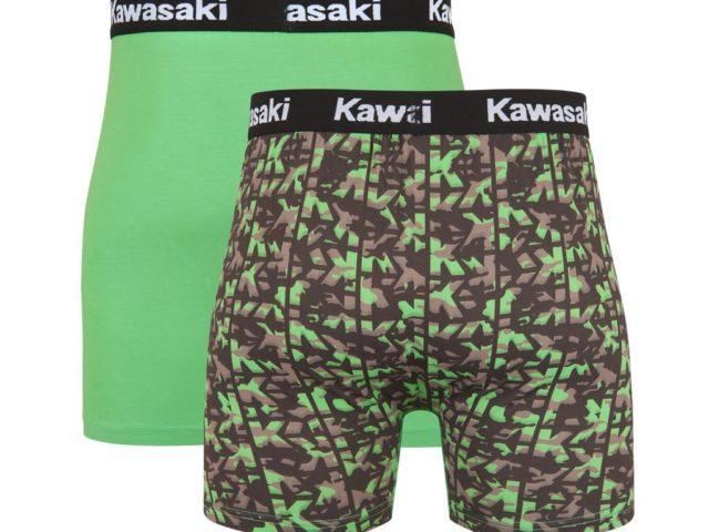 221SPM0020 kawasaki bokserice 01