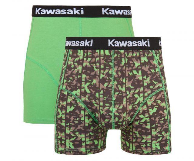 221SPM0020 kawasaki bokserice 02