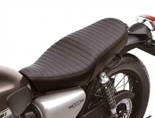 Kawasaki w800 2019 11